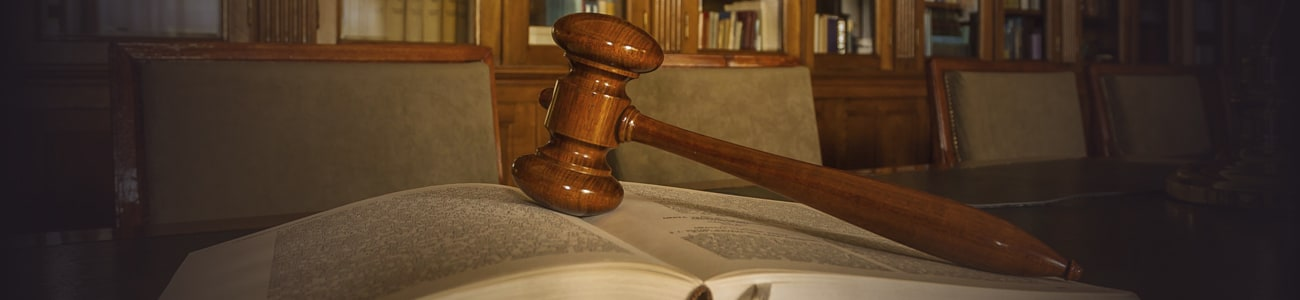 Banner picture of a gavel over a book